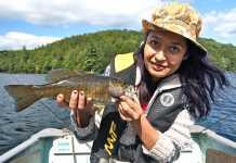 best-baitcasting-reel-for-ight-lures