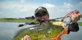 best-bass-baitcasting-reel