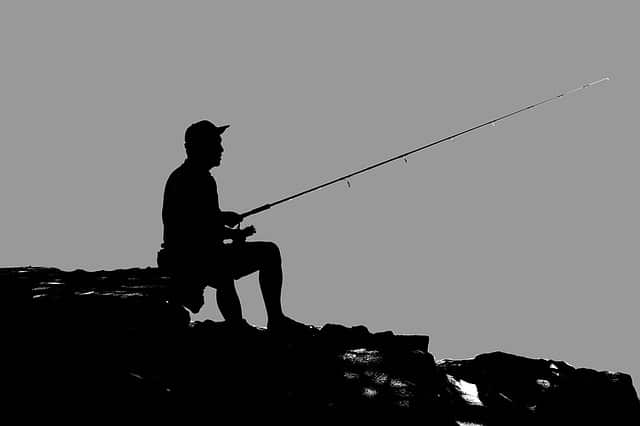 best-shimano-baitcasting-reel