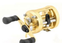 Shimano-Calcutta-400-Review