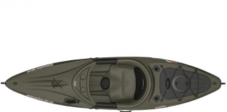 Sun dolphin excursion 10 SS review