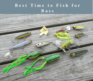 best time to fish for bass