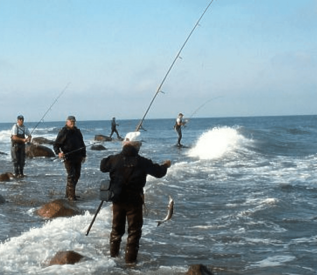 MONTAUK-NEW YORK fishing