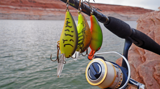 How to Choose the Best Crankbait Rod