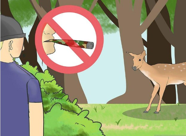 how to call in a doe whitetail