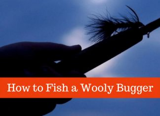 how to fish a wooly bugger