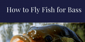 how to fly fish for bass
