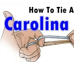 how-to-tie-a-Carolina-rig