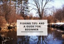 freshwater fishing for beginners