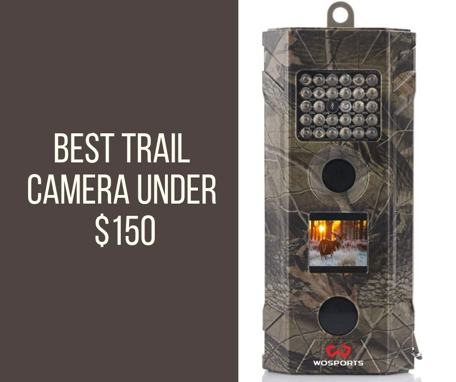 Best Trail Camera Under 150