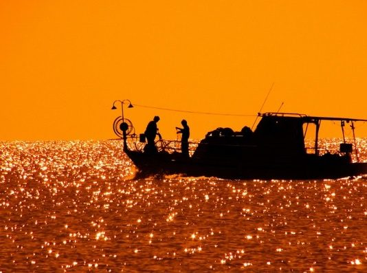 Tips for Cleaning and Storing Your Fishing Gear