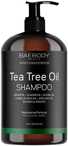Maple Holistics Tea Tree Oil Shampoo & Hair Conditioner Set