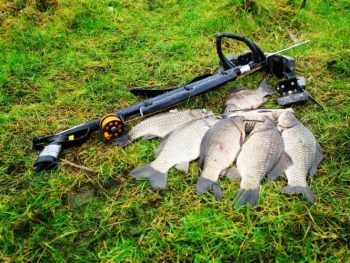 How to catch a fish with a crossbow