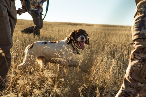 Essential-Camping-Tips-For-Hunting