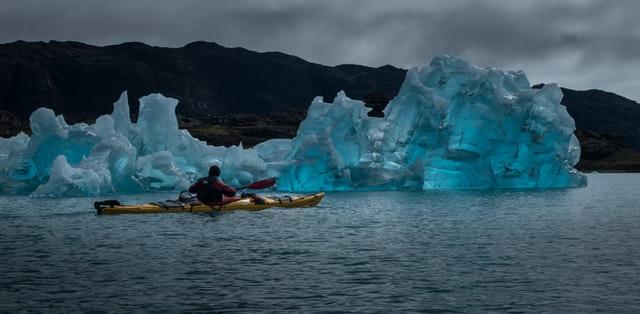 Kayaking and Turtle Sighting
